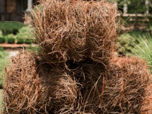 Pine-Straw-Bale